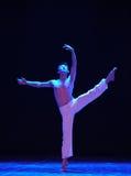 课本啼声现代舞蹈 库存照片