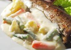 调味汁海鲜鳟鱼蔬菜 图库摄影
