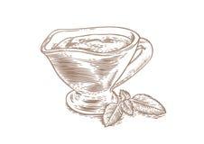 调味汁瓶用红色西红柿酱和绿色蓬蒿叶子 向量例证