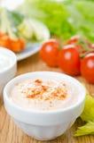 调味汁用各式各样的蕃茄和辣椒粉 免版税库存图片