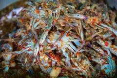 调味的螃蟹 图库摄影