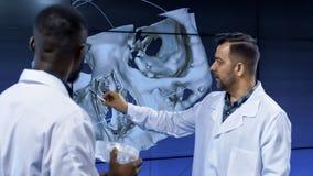 调查人的头骨的医学家 免版税库存图片