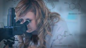 调查显微镜的科学家 股票录像