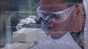 调查显微镜的科学家 股票视频
