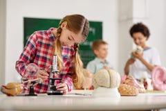 调查显微镜的聪明的好奇女孩 库存图片