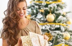 调查购物袋的愉快的妇女在圣诞树附近 库存照片