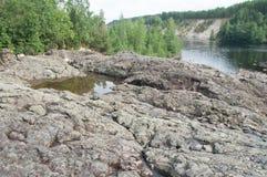 调查camerarocky河床的灰色猫和古老绝种火山和喷泉在卡累利阿 库存图片
