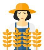 调遣人麦子 免版税图库摄影
