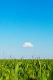 调遣和在蓝天的一朵云彩 图库摄影