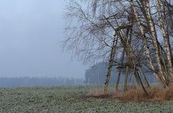调遣用甜菜在与树冰的12月早晨与狩猎 免版税库存照片