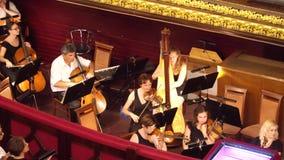调整他们的仪器的音乐家在表现前 股票视频