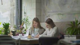 谈论企业项目和喝咖啡的两个女商人在咖啡馆 股票视频
