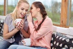 谈话两个妇女的朋友拿着咖啡杯 免版税库存照片