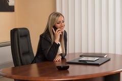 谈话在电话和使用计算机的女实业家 库存照片
