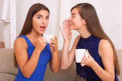 谈话愉快的朋友,饮用的咖啡和茶 图库摄影