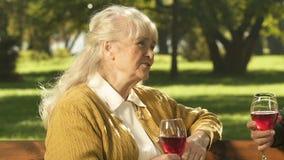 谈话老的最好的朋友,饮用的酒,在退休,长寿的无忧无虑的休息 股票视频