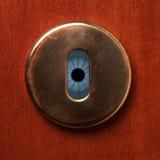 间谍的眼睛 免版税图库摄影