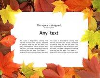 说谎在下落的秋叶的一个白纸 库存照片
