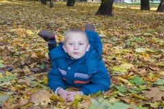 说谎在叶子槭树的男孩 免版税库存图片