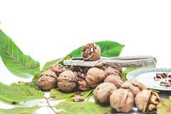 说谎在叶子的堆核桃 在胡桃钳和茶碟附近 图库摄影