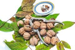 说谎在叶子的堆核桃 在胡桃钳和茶碟附近 免版税库存图片