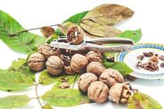 说谎在叶子的堆核桃 在胡桃钳和茶碟附近 免版税库存照片