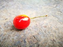 说谎在地面的更加多雨的樱桃果子有另外背景 库存照片