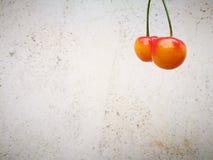 说谎在地面的更加多雨的樱桃果子有另外背景 图库摄影