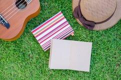 说谎在有可爱的帽子和笔记本的草甸的尤克里里琴。 免版税库存照片