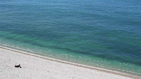 说谎在木瓦海滩和晒日光浴在海洋附近的人 股票视频