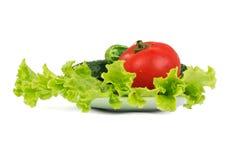 说谎在板材的莴苣、蕃茄和两个黄瓜 免版税库存图片