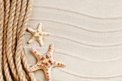 说谎在海沙的海星和棕榈叶 有标签的一个地方 库存图片