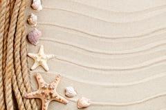 说谎在海沙的海星和棕榈叶 有标签的一个地方 免版税图库摄影