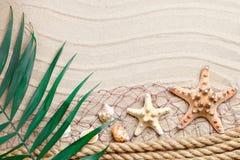 说谎在海沙的海星和棕榈叶 有标签的一个地方 免版税库存照片