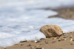 说谎在海滨的浮岩片断 免版税库存图片