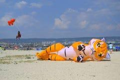 说谎在海滩的滑稽的猫风筝 免版税库存照片