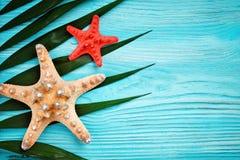 说谎在蓝色木背景的海星和棕榈叶 有标签的一个地方 免版税库存图片