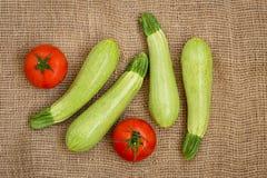说谎在袋装的夏南瓜和蕃茄 免版税库存图片