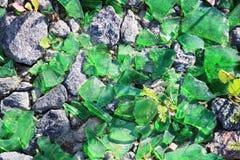 说谎在路面的绿色瓶碎片 免版税库存照片