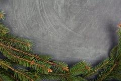 说谎在黑板的云杉分支 圣诞树黑色背景 新年度 库存照片