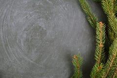 说谎在黑板的云杉分支 圣诞树黑色背景 新年度 免版税库存图片