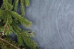 说谎在黑板的云杉分支 圣诞树黑色背景 新年度 库存图片