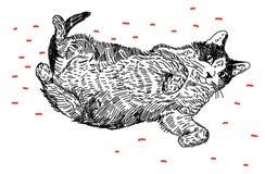 说谎在他的猫  免版税库存图片