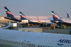 谢列梅,莫斯科,俄罗斯- 2017年11月13日:飞机服务在机场 库存图片