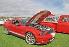 谢尔比GT 500 库存图片