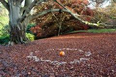 谢菲尔德公园庭院 免版税库存照片