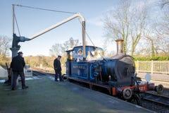 谢菲尔德公园,东部SUSSEX/UK - 11月22日:会开蓝色钟形花的草蒸汽Tr 库存图片