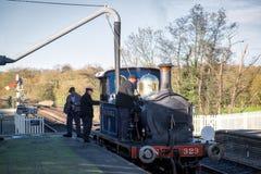 谢菲尔德公园,东部SUSSEX/UK - 11月22日:会开蓝色钟形花的草蒸汽Tr 免版税图库摄影