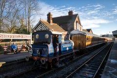 谢菲尔德公园,东部SUSSEX/UK - 11月22日:会开蓝色钟形花的草蒸汽Tr 免版税库存照片