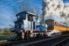 谢菲尔德公园,东部SUSSEX/UK - 11月22日:会开蓝色钟形花的草离开 库存照片